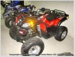 RX-Motos15